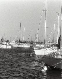Chicago sail boats in harbor